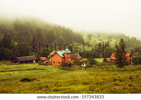 Morning fog in a mountain valley .Ukrainian Carpathians - stock photo
