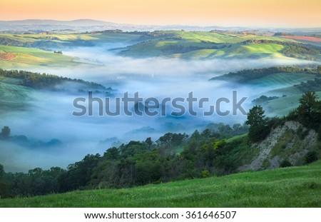 Morning Fog in Fresh Green Tuscan Valley, Summer Landscape - stock photo