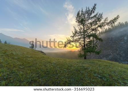 Morning fog in the valley of the river Oka, Sayan mountains. Summer landscape - stock photo