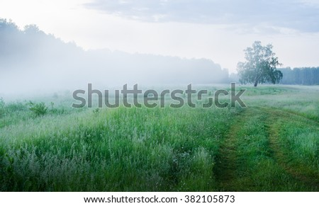 morning fog on the river in the spring - stock photo