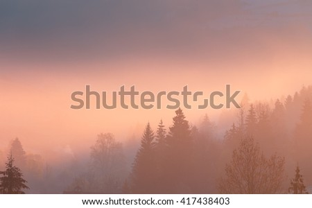 Morning fog over mountain hollow. Carpathian mountains. Ukraine. - stock photo