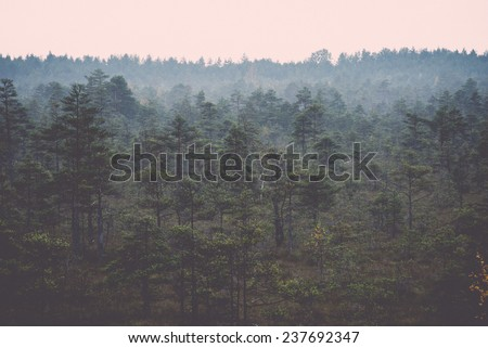 Morning fog over the forest lake and marsh in the bog - retro, vintage style look - stock photo