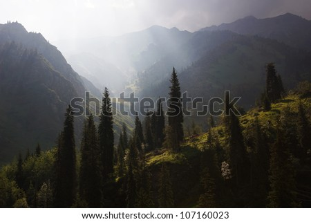 Morning in summer mountains - stock photo