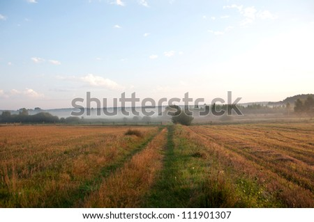 morning in the meadows - stock photo