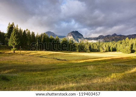 Morning in the mountain - stock photo