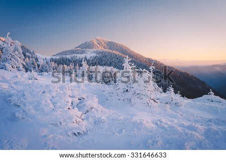 Morning landscape in the mountains. The first rays of the sun on top. Snowy winter. Carpathians, Ukraine, Europe. Low contrast. Color toning - stock photo