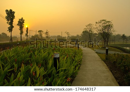 Morning light outdoor parks - stock photo