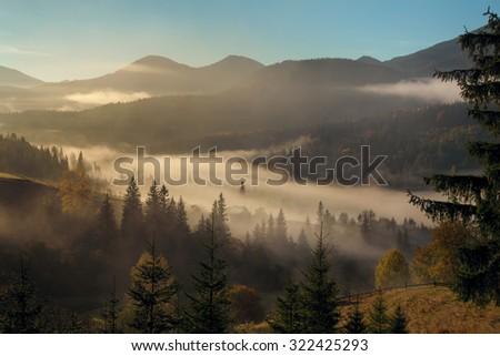 Morning mist in mountain woodland. Autumn dawn. - stock photo