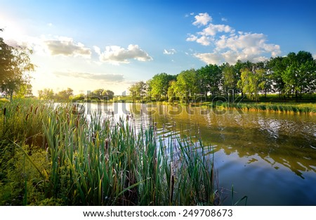 Morning on a beautiful river in summer - stock photo