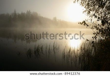 Morning's fog over the lake - stock photo
