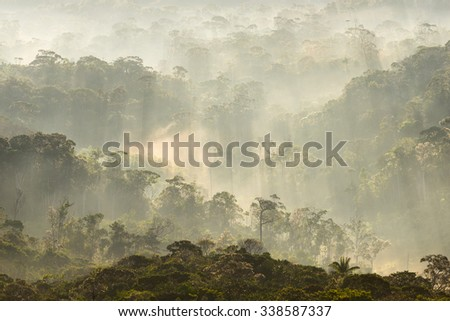 Morning view with hazy atmosphere, of the Gran Sabana (Great Savannah) forests in Canaima National Park, Venezuela. - stock photo