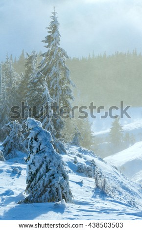 Morning winter mountain blizzard scenery with icy fir trees on slope. - stock photo