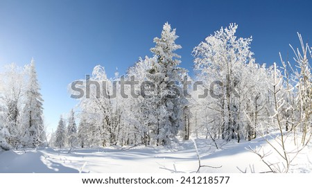 Morning winter scenery with blue sky - stock photo