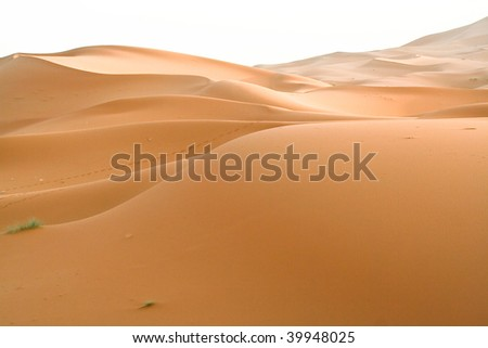moroccan desert dune - stock photo