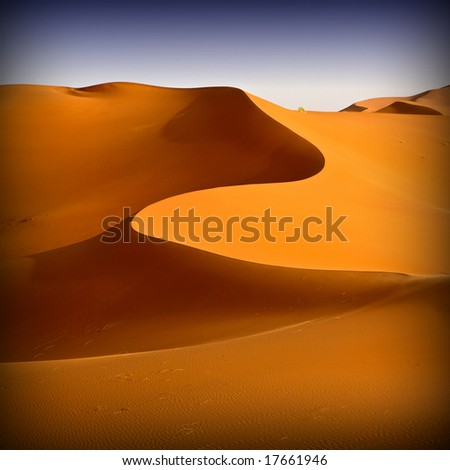 Moroccan desert dune background 06. Blue sky - stock photo