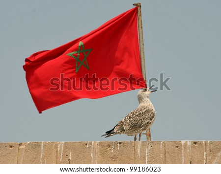 Morocco flag - stock photo