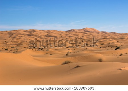 MOROCCO - JANUARY 10, 2014: Sahara desert dunes, clear blue sky - stock photo