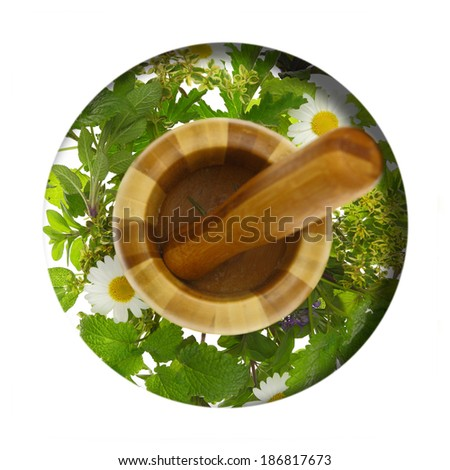 Mortar and pestle with fresh herbs around it - stock photo
