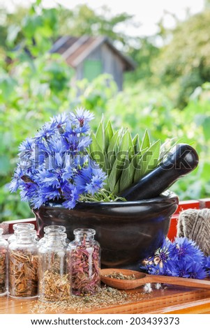 mortar with blue cornflowers and sage on windowsill, herbal medicine - stock photo