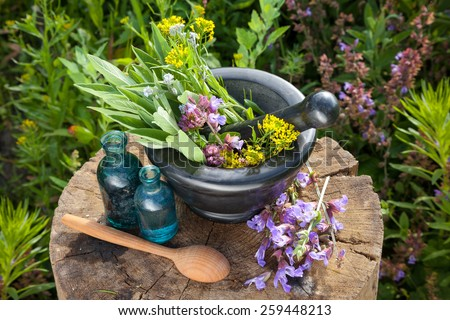 Mortar with healing herbs and sage, bottles of essential oil in garden. Herbal medicine. - stock photo