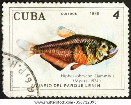 "MOSCOW, RUSSIA - DECEMBER, 2015: a post stamp printed in CUBA shows a fish Hyphessobrycon flammeus, the series ""Fish in Lenin Park Aquarium, Havana"", circa 1978 - stock photo"