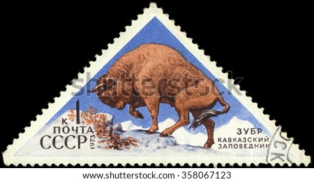 """MOSCOW, RUSSIA - DECEMBER, 2015: a post stamp printed in the USSR shows an animal with the inscription """"Beaver"""", the series """"Fauna - Nature Reserves"""", circa 1973 - stock photo"""