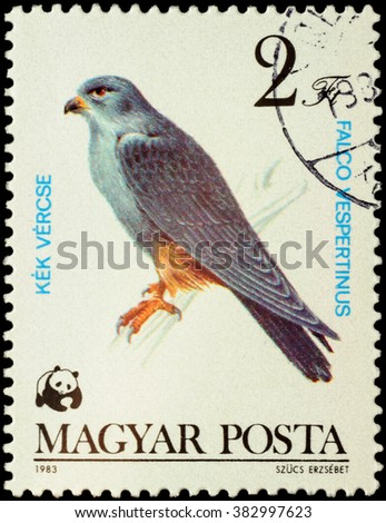"MOSCOW, RUSSIA - FEBRUARY 28, 2016: A stamp printed in Hungary shows red-footed falcon (Falco vespertinus), series ""World Wildlife Fund - Birds of Prey"", circa 1983 - stock photo"