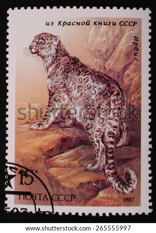Moscow, USSR- circa 1987: Postage stamp printed mail USSR shows image of the animal from the red book irbis - stock photo