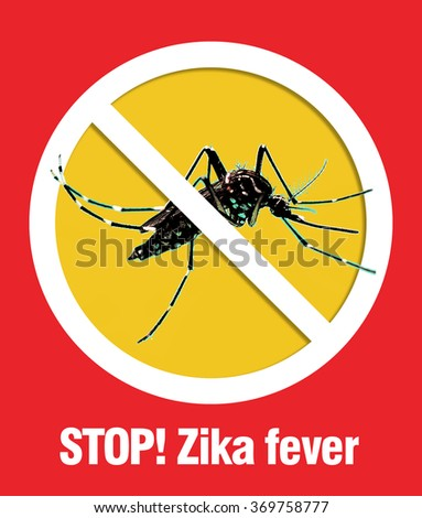 Mosquito dangerous villain destroys lives, stop Zika virus/ illustration                             - stock photo