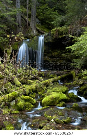 Moss covered rocks are scattered through the stream and Fern Falls is just above it. - stock photo