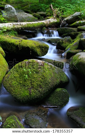 Moss Covered Rocks in Creek With Fallen Tree in Green Forest - stock photo