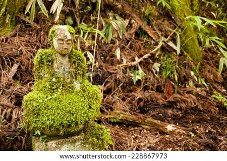 Mossy bodhisattva statue at Okunoin cemetery, Japan - stock photo