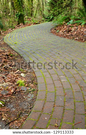 Mossy curved brick path into ferny woods - stock photo