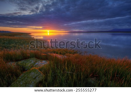 Mossy rocks among marshy grass along a river at sunset - stock photo