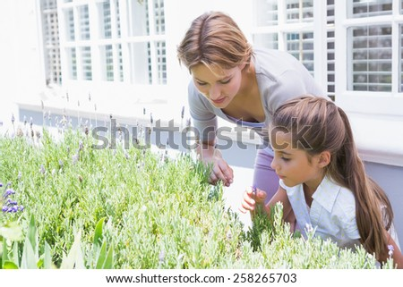 Mother and daughter tending to flowers outside in the garden - stock photo