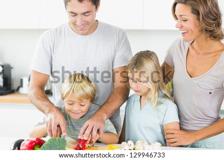 Mother and daughter watching father and son slicing vegetables in the kitchen - stock photo