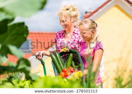 Mother and daughter working in garden harvesting and watering vegetables in front of their house - stock photo