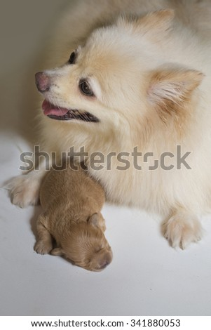 Mother care - stock photo