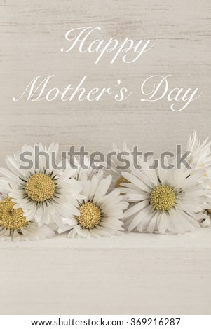 mother's day card with daisy - stock photo