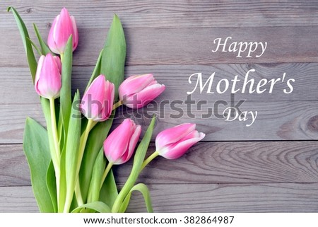 Mothers day card with tulips. Pink tulips for mother day. Mothers day background and mother day flower. Mothersday gift.  - stock photo