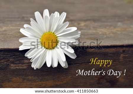 Mothers day. Mothers day card. Mothers day. Daisy flower for mothers day on wood background. . Mothers day background. Mothers day. Mothers day gift. Mothers day card with copy space. - stock photo
