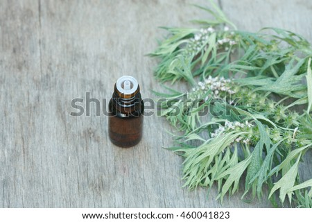 motherwort essential oil container with motherwort flowers on wooden background - stock photo