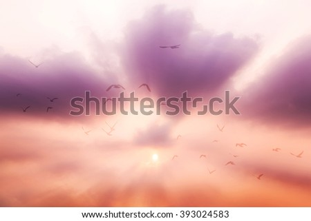 Motion blur The birds fly into the heaven. - stock photo