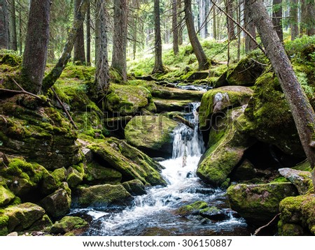 Mount forest waterfall between mossy rocks, fresh green scenery - stock photo