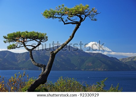 Mount Fuji near Hakone - stock photo