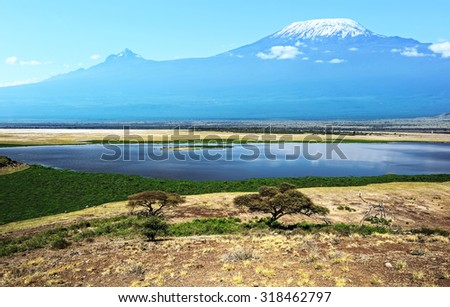 Mount Kilimanjaro in the African savannah Amboseli Park - stock photo