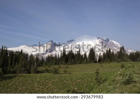 Mount Rainier behind alpine field - stock photo