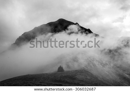 Mountain and a tree black and white - stock photo