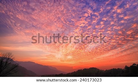 Mountain and Tree at sunset (Doi Chiang Dao) - stock photo