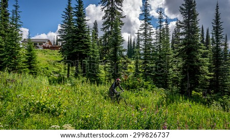 Mountain Biker coming Down through the Meadow with Alpine Flowers on a summer day at Sun Peaks ski resort in Central British Columbia - stock photo